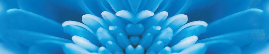 flower-blue-2